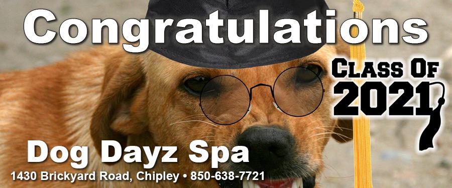 Dog Dayz Spa